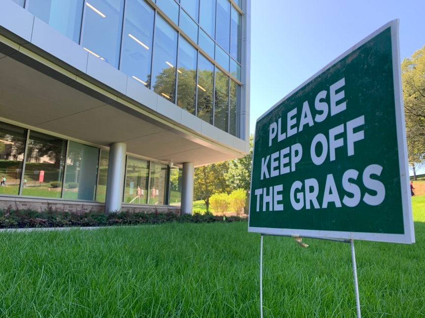 Senior Expelled After Stepping on Grass Outside DSB